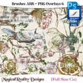 Brushes ABR - PNG Overlays Set 6