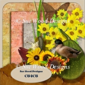 Autumn Sun designer resource cu4cu