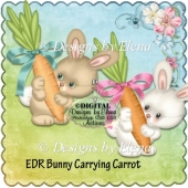 Bunny Carrying Carrot PS Action