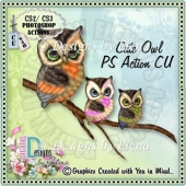 Cute Owl 01 PS Action