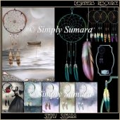Designer Resource Dream Catchers