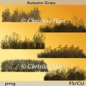 Autumn Grass png
