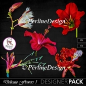Delicate Exotic Flowers by PerlineDesign