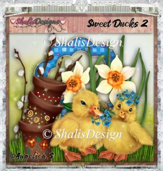 Sweet Ducks 2