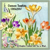 Crocuses PSD Layered Template