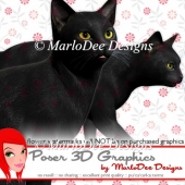 Black Cat Graphics by MarloDee Designs