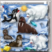 CU Polar Friends 1 FS by GJ