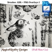 Brushes ABR - PNG Overlays Set 2