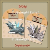 Dolphins set 4