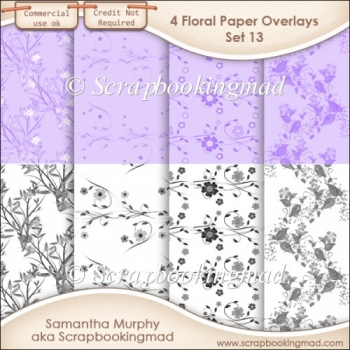 Floral Paper Overlays - Set 13 - PNG FILES - CU OK