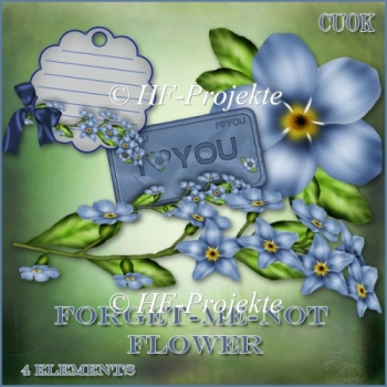 CU forget me not Flower Paint