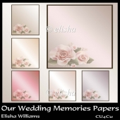Our Wedding Memories Papers