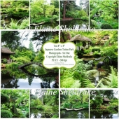 Japanese Gardens,Tatton Park - Ten 8 x 8 Photographs PU/CU