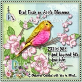 Bird Finch on Apple Blossoms