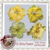 CU Yellow Flowers