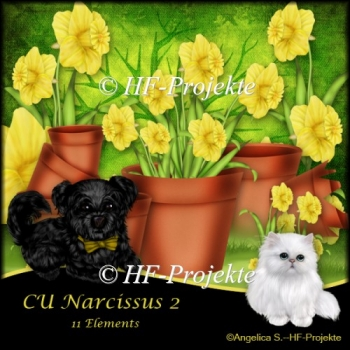 CU Narcissus 2 handmade painted