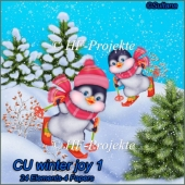 CU Winter Joy 1