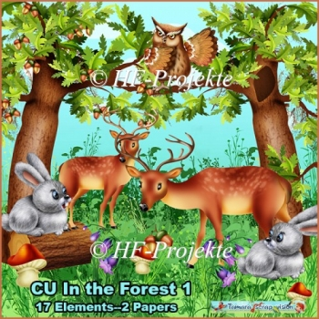 CU In the Forest 1