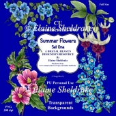 Summer Flowers Set One- CU Designer Resource For CU/PU