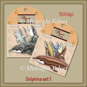 Dolphins set 1