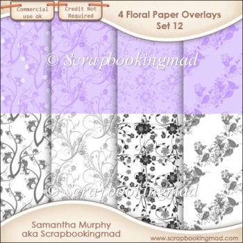 Floral Paper Overlays - Set 12 - PNG FILES - CU OK
