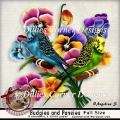 Budgies and Pansies