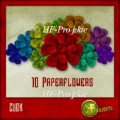 10 Paperflowers