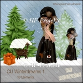 CU WInterdreams 1