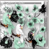 CU Exotic Birds 3 FS by GJ