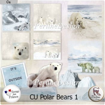 Polar Bears 1 : Papers, elements and paper overlays