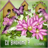 CU Birdhome Elements 7