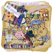 Get Well Wishes FS Mini Kit