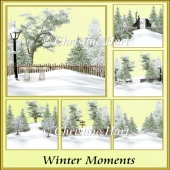 Winter Moments