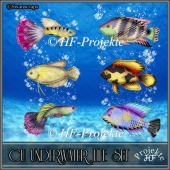 CU UNDER WATER LIFE SET 2020