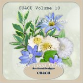 Designer Resource cu4cu Volume 10