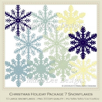 Christmas Holiday Package 7 Snowflakes