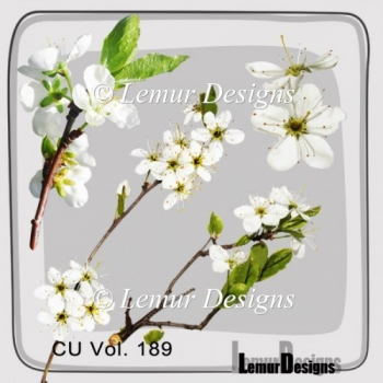 CU Vol. 189 flowers by Lemur Designs