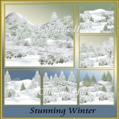 Stunning Winter png
