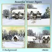 Beautiful Winter Papers