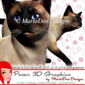 Siamese Cat Graphics by MarloDee Designs