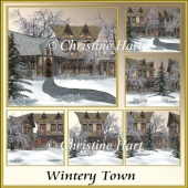 Wintery Town png