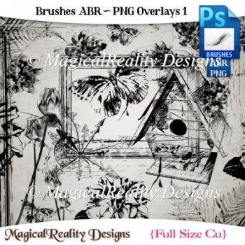 Brushes ABR - PNG Overlays Set 1