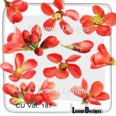 CU Vol. 187 flowers by Lemur Designs