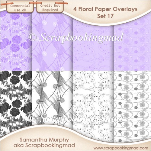 Floral Paper Overlays - Set 17 - PNG FILES - CU OK