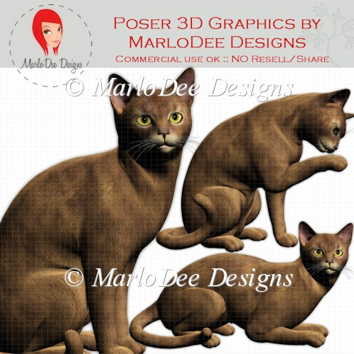 Abyssinian Cat Graphics by MarloDee Designs