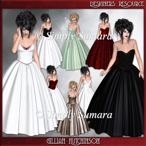Designer Resource 8 Evening Dress Ladies