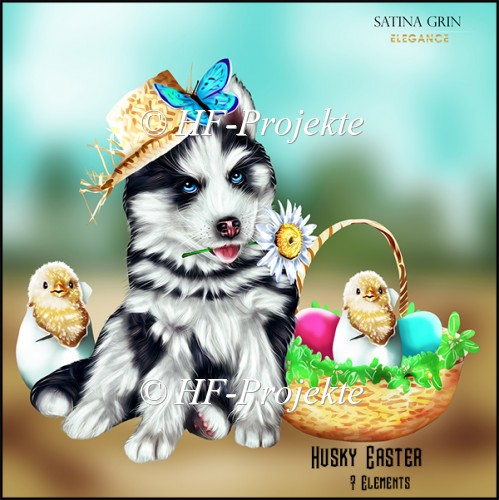 CU Husky Easter - Click Image to Close
