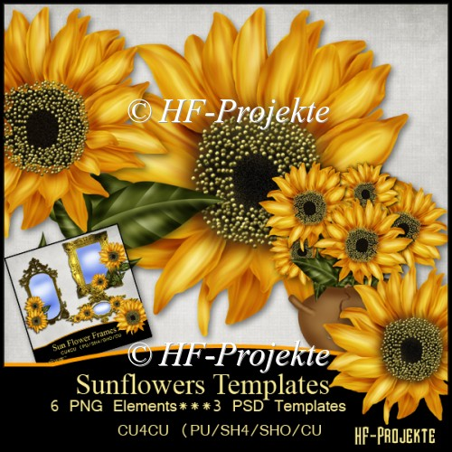 RESALE Paint Sunflowers