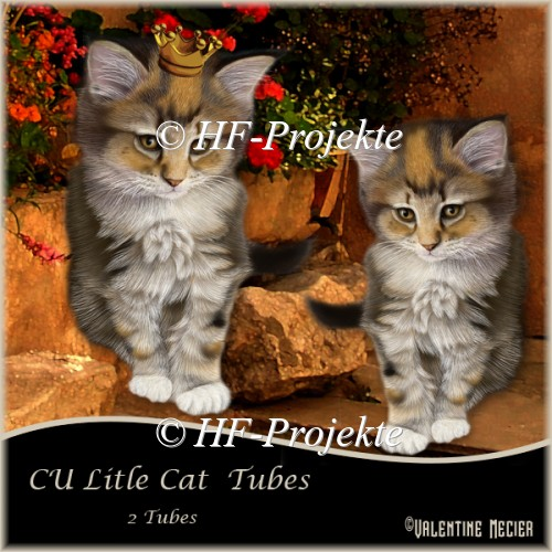 CU Little Cat Tubes