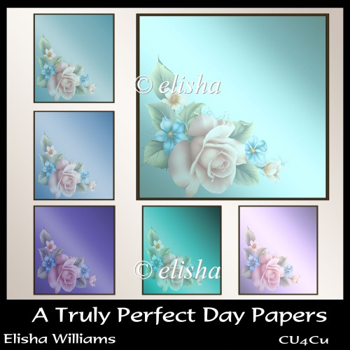 A Truly Perfect Day Papers